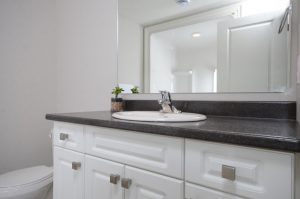 43 Aspen Dr-large-020-20-Lower Level  Bathroom-1500x994-72dpi