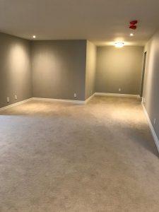 Rec Room Area